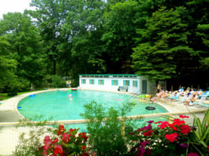 Capon Springs Pool resized